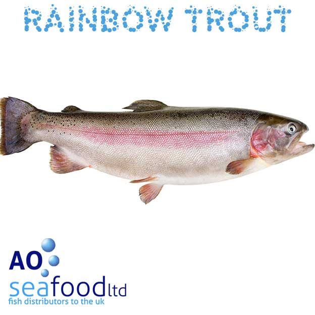 Buy fresh rainbow trout online fillets or whole fish for Order fish online