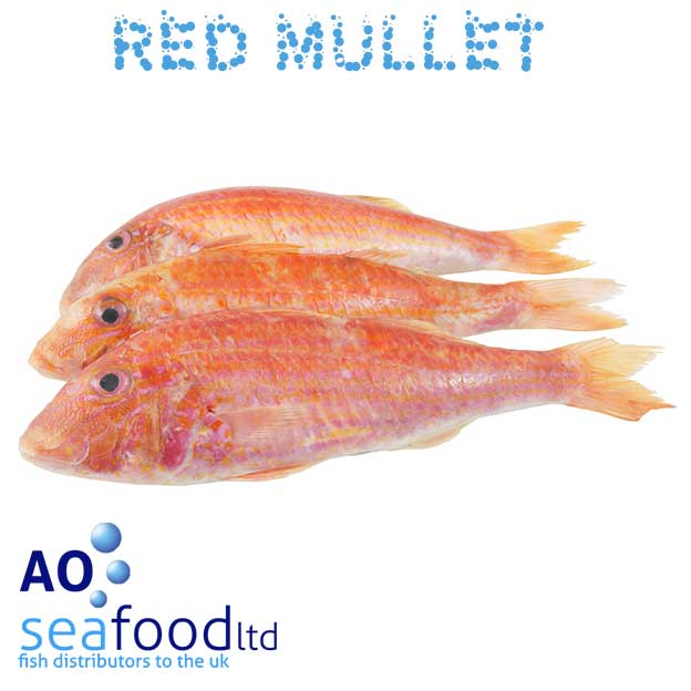 Buy red mullet fresh red mullet ao seafood delivery for Fresh fish delivery