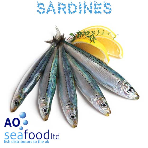 Buy sardines fillets or whole fish for Where can i buy fish