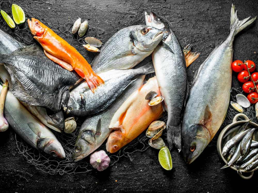 Fresh Fish Selection Box
